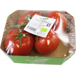 Pomidory na gałązce BIO ( 0,45 kg)